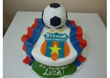 Tort hai Steaua