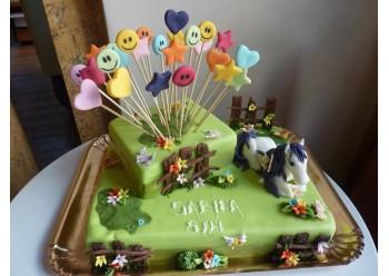 Tort Sabina