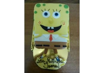 Tort Sponge