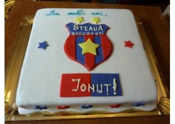 Tort fan Steaua